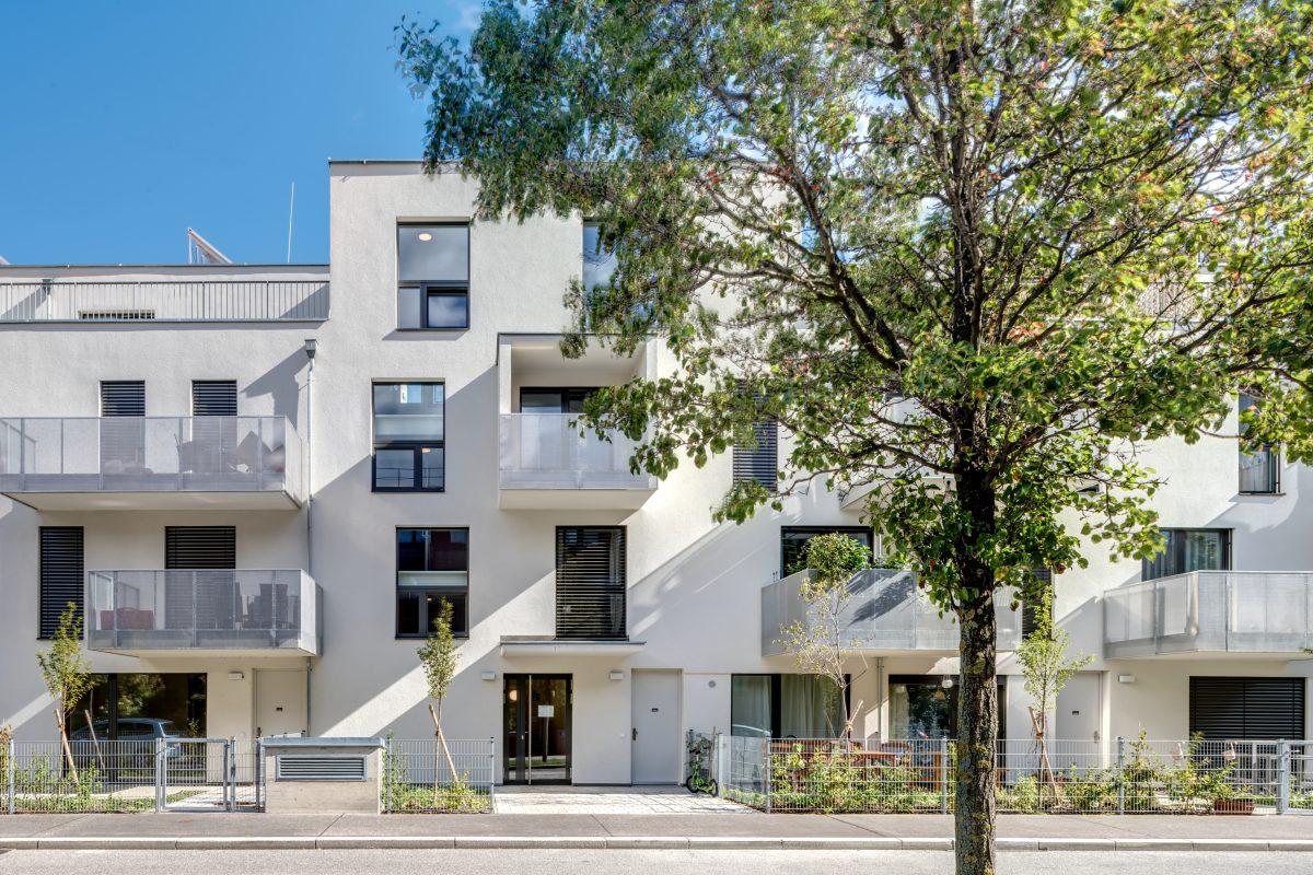 Wien, Wohnbau Viehtriftgasse 3, 1210 Wien