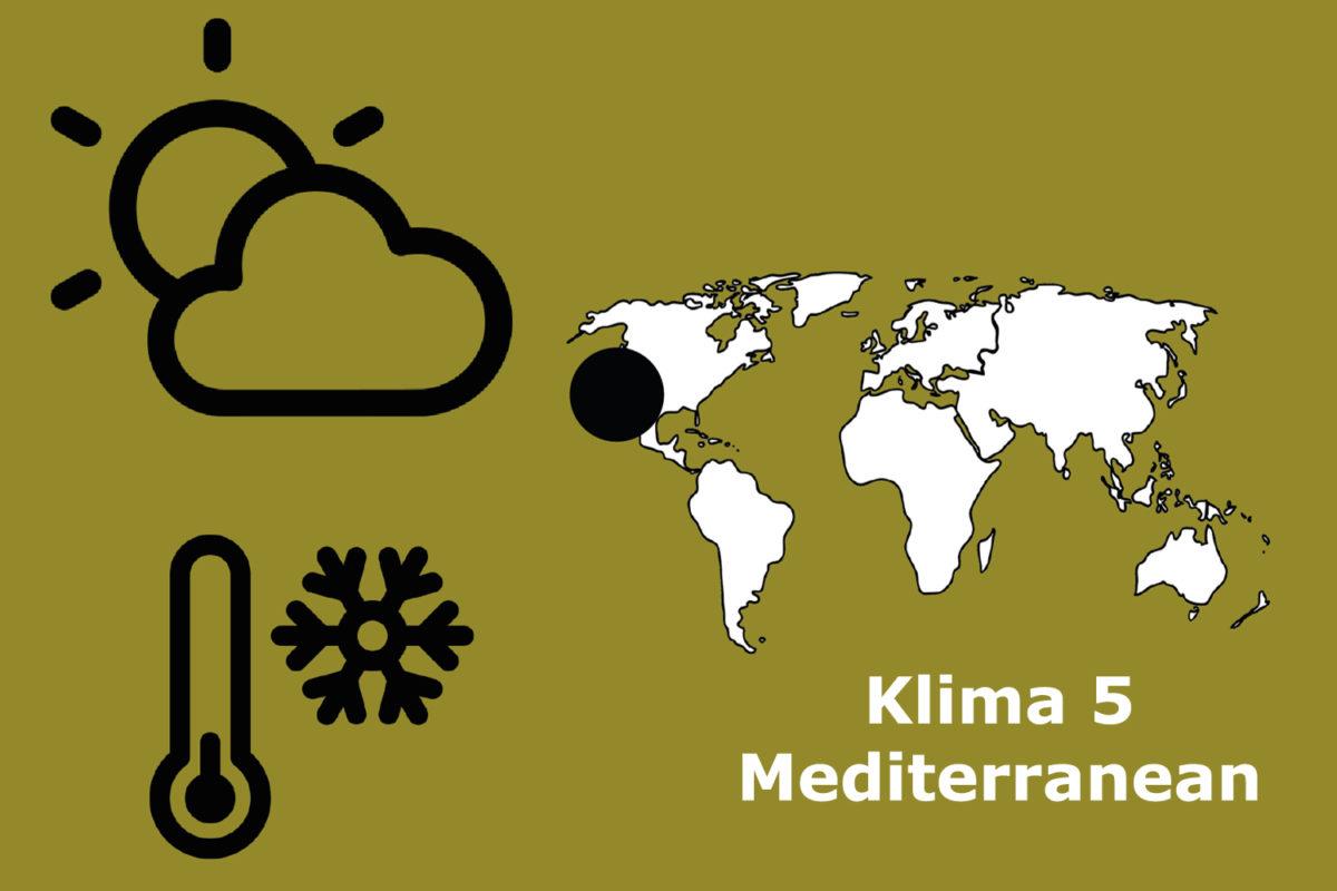 Klimazone 5 Mediterranean